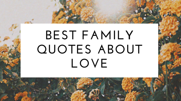 Best Family Quotes About Love