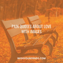 quotes pain and suffering