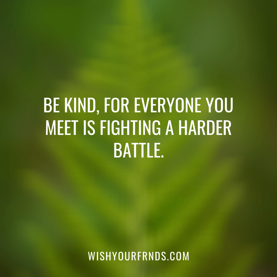 About Kindness Quotes