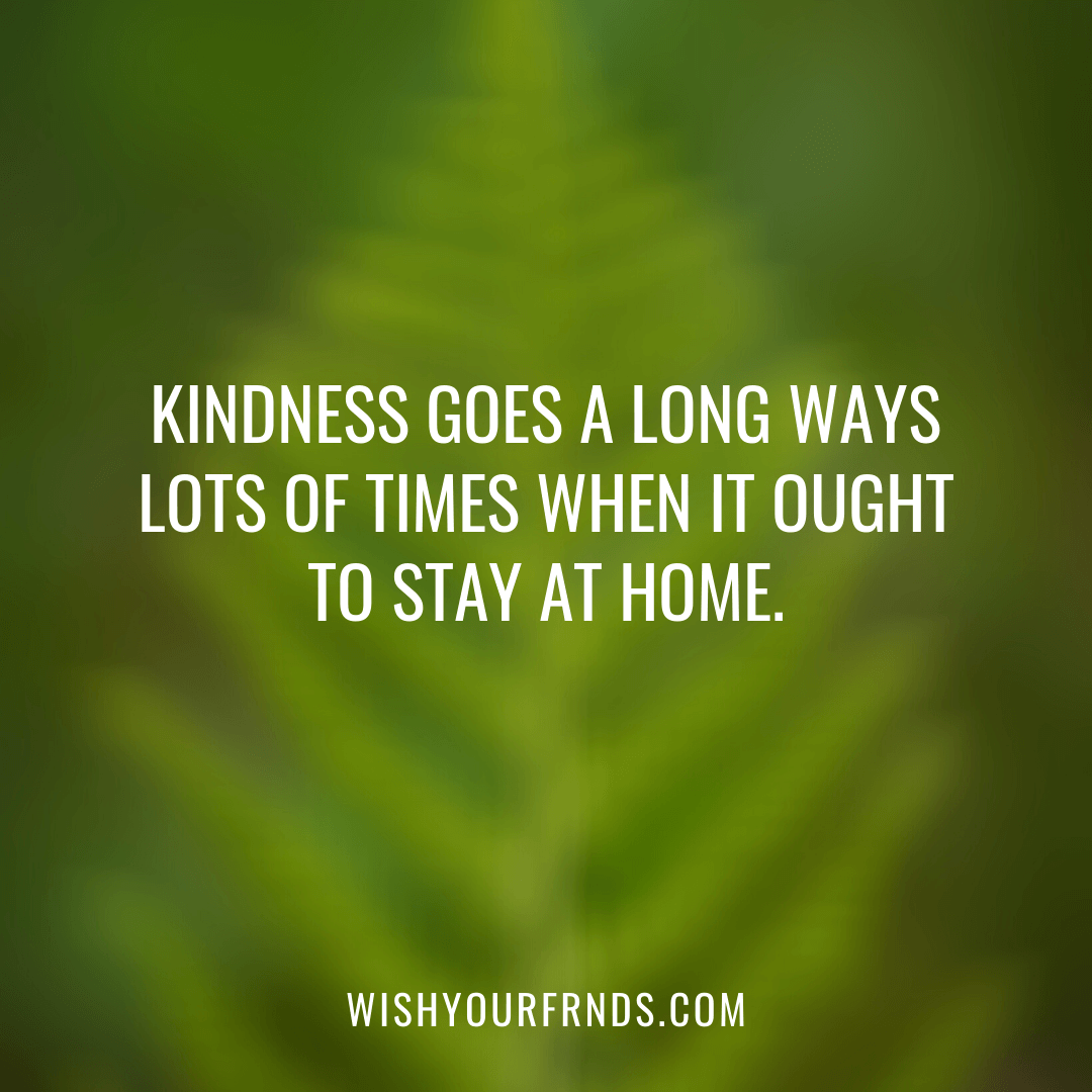 Kindness Heart Quotes