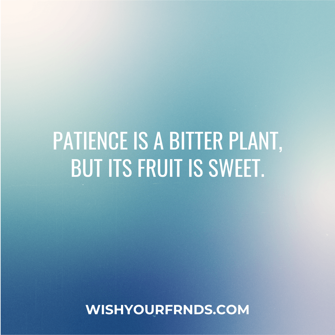 Quotes on Patience