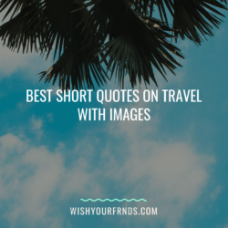 short quotes on travel